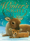 Cover image for A Winter's Night