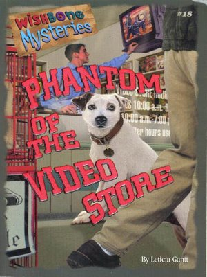 cover image of The Phantom of the Video Store