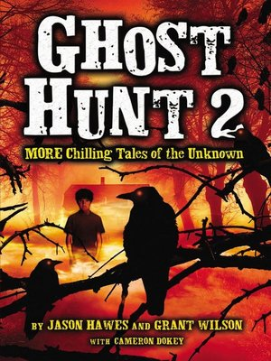 cover image of Ghost Hunt 2