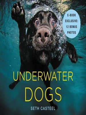 cover image of Underwater Dogs