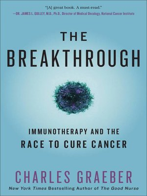 cover image of The Breakthrough