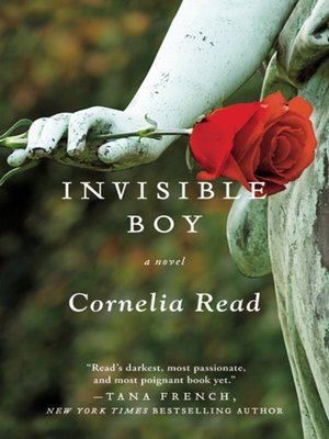 cover image of Invisible Boy
