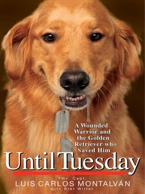 cover image of Until Tuesday