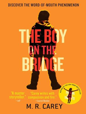 cover image of The Boy on the Bridge