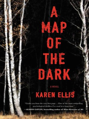 cover image of A Map of the Dark