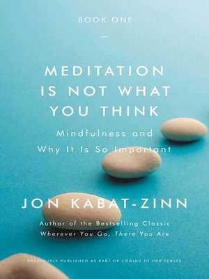 cover image of Meditation Is Not What You Think