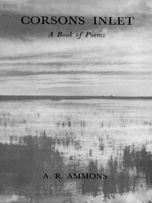 cover image of Corsons Inlet