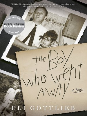 cover image of The Boy Who Went Away