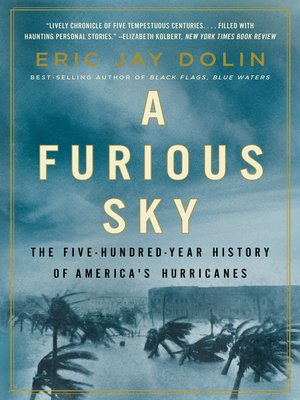 cover image of A Furious Sky