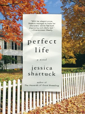 cover image of Perfect Life