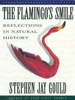 cover image of The Flamingo's Smile