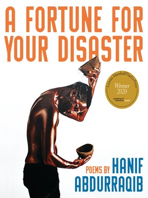 cover image of A Fortune for Your Disaster