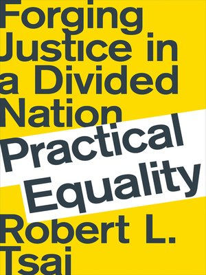cover image of Practical Equality