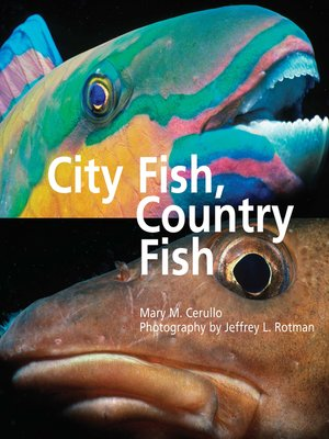 cover image of City Fish Country Fish
