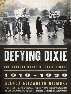 cover image of Defying Dixie