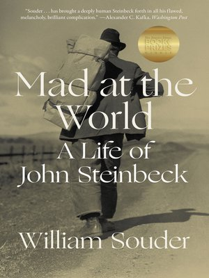 cover image of Mad at the World