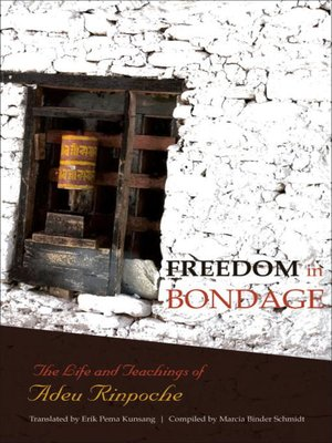 cover image of Freedom in Bondage