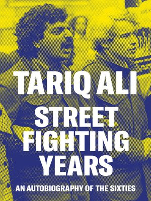 cover image of Street Fighting Years