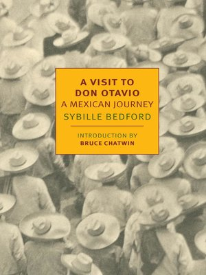 cover image of A Visit to Don Otavio
