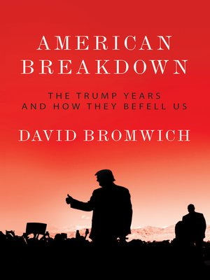 cover image of American Breakdown