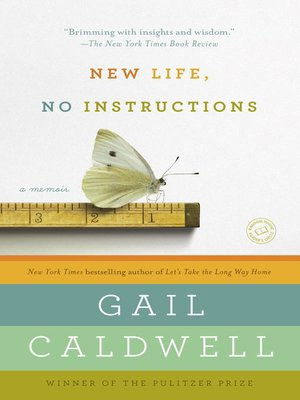 cover image of New Life, No Instructions