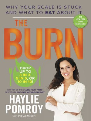 cover image of The Burn
