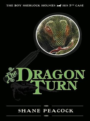 cover image of The Dragon Turn
