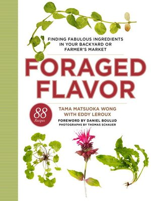 cover image of Foraged Flavor