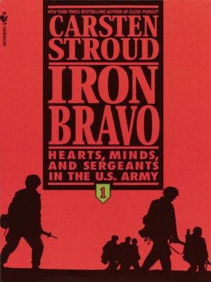 cover image of Iron Bravo