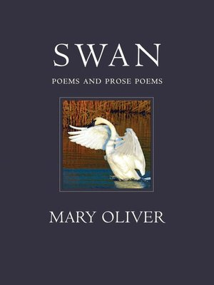cover image of The Swan