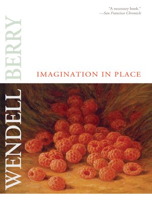 cover image of Imagination in Place