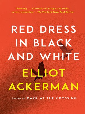 cover image of Red Dress in Black and White