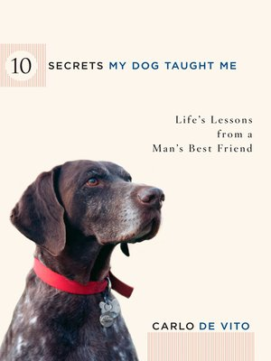 cover image of 10 Secrets My Dog Taught Me