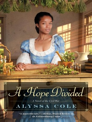 cover image of A Hope Divided