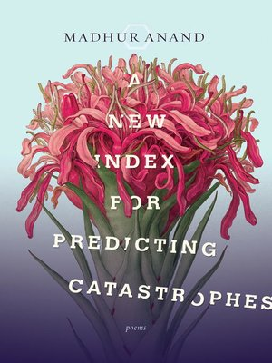 cover image of A New Index for Predicting Catastrophes