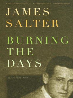 cover image of Burning the Days