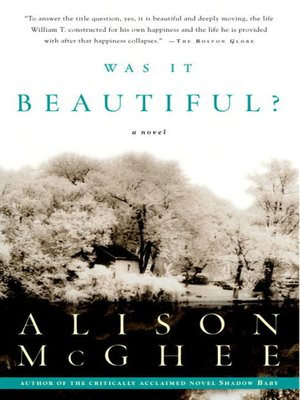 cover image of Was It Beautiful?