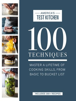 cover image of 100 Techniques