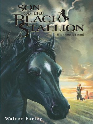cover image of Son of the Black Stallion