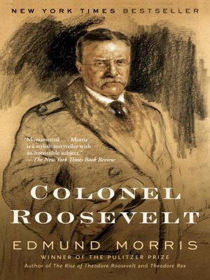 Cover image for Colonel Roosevelt