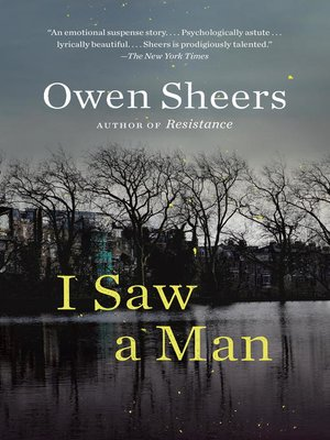 cover image of I Saw a Man