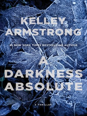 cover image of A Darkness Absolute