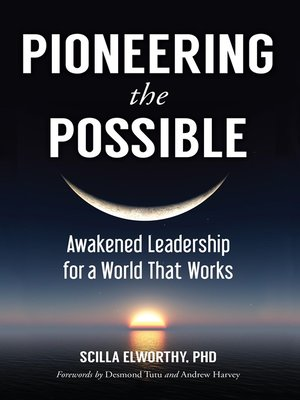 cover image of Pioneering the Possible