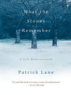 cover image of What the Stones Remember