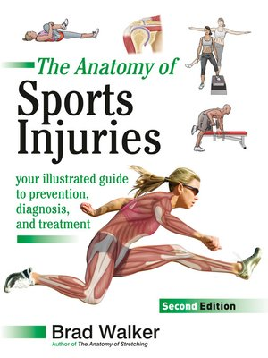 cover image of The Anatomy of Sports Injuries