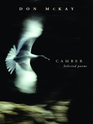cover image of Camber