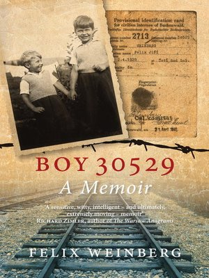 cover image of Boy 30529