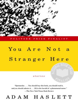 cover image of You Are Not a Stranger Here