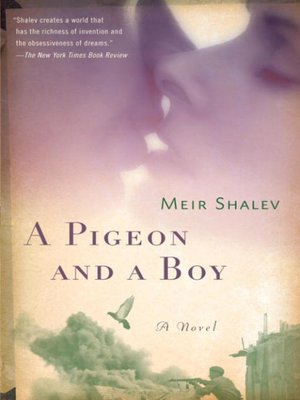 cover image of A Pigeon and a Boy