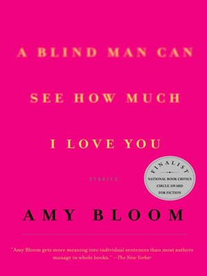 cover image of A Blind Man Can See How Much I Love You